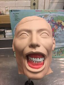 Dental-Manikin-Columbia-Dentoform-New-Shroud-and-Holder-included