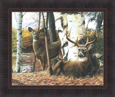 WILDLIFE ART PRINT Undercover II by Kevin Daniel Deer Doe Poster 14x11