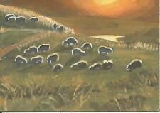 """Aceo original acrylic painting """"Sheep Grazing at Sunset"""" by J. Hutson"""