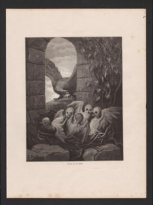 L'aigle E La Gufo I Favole Di Lafontaine Incisione Gustave Dorata Available In Various Designs And Specifications For Your Selection Antiques