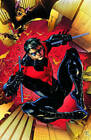 Nightwing Volume 1: Traps and Trapezes TP by Kyle Higgins (Paperback, 2012)