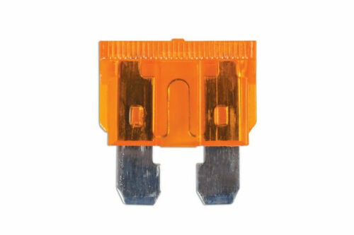 Auto Blade Fuse 5-amp Beige Pack 5030413 by ConnectNew