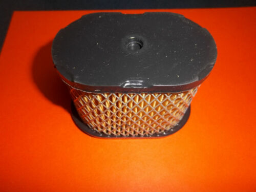 NEW REPLACEMENT BRIGGS AIR FILTER 690610 697029 141137