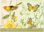 Note Card Bird Collage 9781441310262 Peter Pauper Press Inc US 2012 Cards