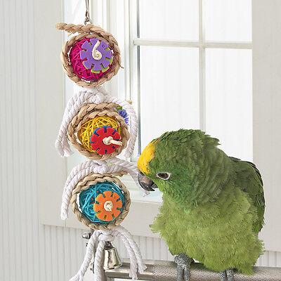 NEW Bird Bites Parrot Climb Chew Toy Bell Swing Cage Hanging Cockatiel Parakeet