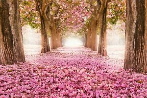 A1 | Pink Blossom Trees Poster Art Print 60 x 90cm 180gsm Tree Spring Gift #8270