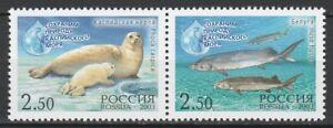 Russia-2003-Fauna-Fish-Marine-life-2-MNH-Stamps