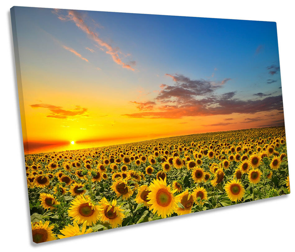 Sunset Sunflowers Floral CANVAS WALL ART SINGLE Picture Print