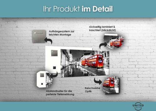 HD GlasBild Wandbilder XL 50 x 100 cm EG4100502420 SEE SONNENUNTERGANG FARBIG