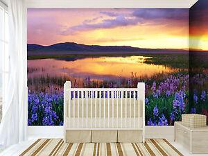 3d Bel Coucher 47 Photo Papier Peint En Autocollant Murale Plafond Chambre Art Parfait Dans L'ExéCution