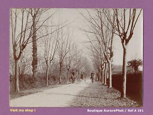 PHOTO-1890-CHASSE-A-COURRE-ROUTE-DE-MORLANNE-PYRENEES-ATLANTIQUES-A191