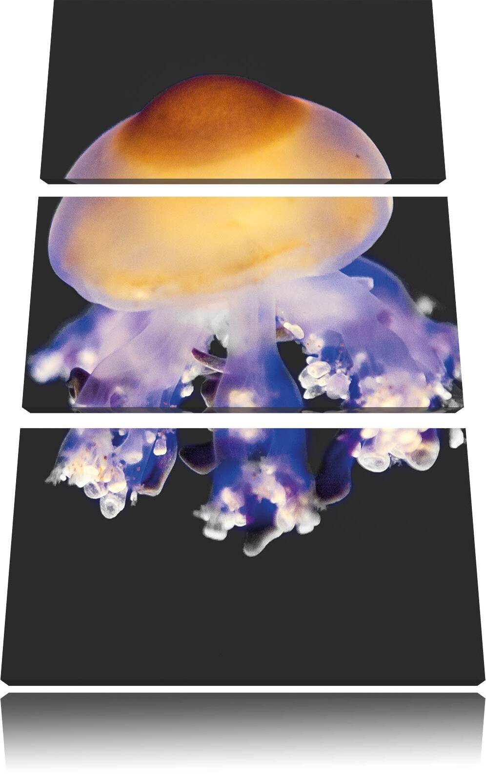 Coloreeato Meduse Nero Bianco 3-Teiler Quadro su Tel Decorazione Parete