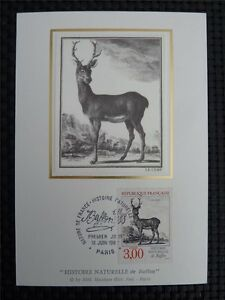 Enthusiastic France Mk Hirsch Deer Animals Maximumkarte Carte Maximum Card Mc Cm C1095 Drip-Dry Stamps