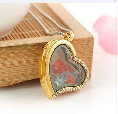 Fashion Gold/Silver Floating Living Memory Glass Locket Necklace Pendant Chain