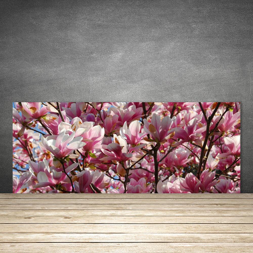 Crédence de de de cuisine en verre Panneau 125x50 Floral Branches Fleurs 5667d6