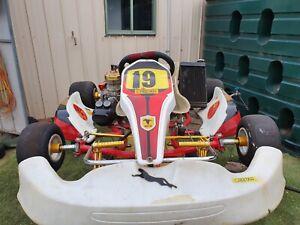 125cc-cheetah-go-kart-2014