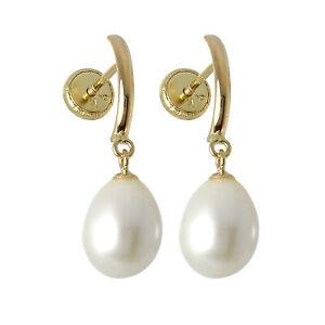 9ct-Gold-amp-Freshwater-Pearl-Screwback-Stud-Earrings-Screw-Back-Studs-Pearls