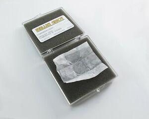 Melles-Griot-20mm-Multiple-Order-Cuarzo-Waveplate-1-4-Onda-830nm-Gaaias-Laser
