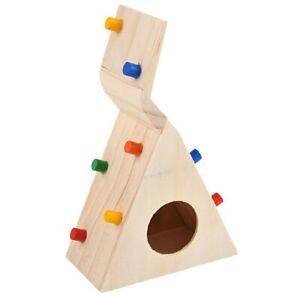 Little-Pet-Hamster-Accesorios-escalera-de-escalada-pequena-fuente-de-Rata-Jerbo-miceo-6J5