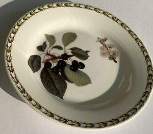 Vintage-Plate-Royal-Horticultural-Society-Hookers-Fruit-Bread-6-3-8-Cherry