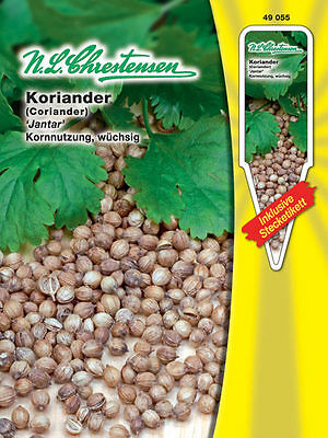 Koriander 'Marino' - Coriandrum sativum, Blattkoriander Kräuter Samen 490465