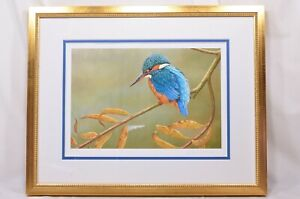 Kingfisher on Willow - Limited Edition Framed Print by Robert E Fuller