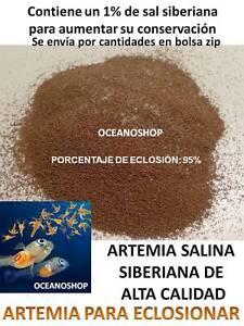 HUEVOS-ARTEMIA-SALINA-SIBERIANA-quistes-PARA-ECLOSIONAR-A-GRANEL-acuario-cria