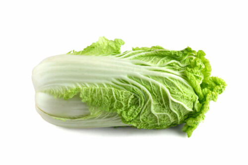 Non GMO Sweet Tender Chinese Cabbage Michihili Heirloom Cabbage Seeds
