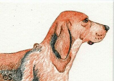 Original Elmo Pet Portrait Drawing