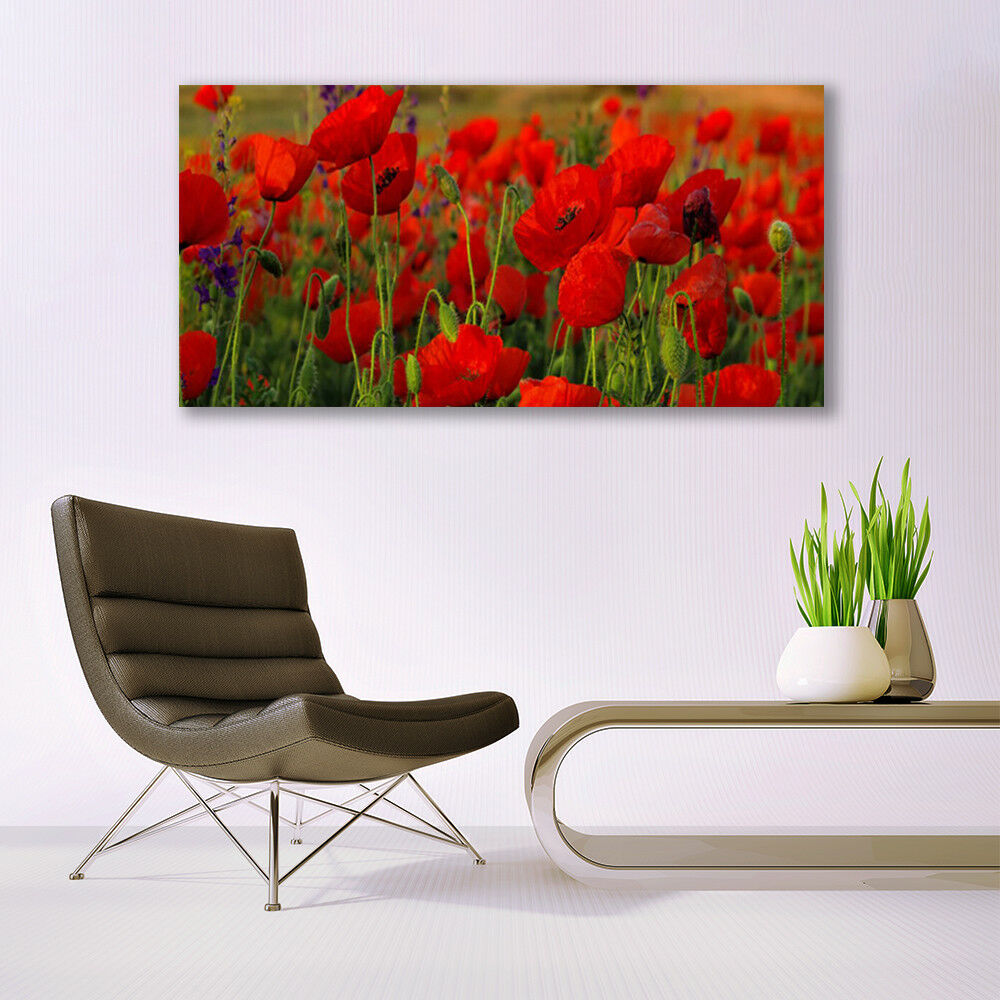 Glass print Wall Wall Wall art 140x70 Image Picture Poppies Floral 366cae