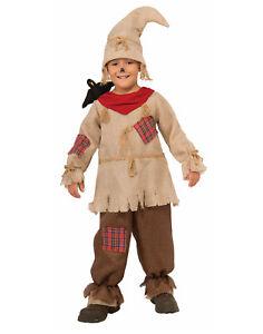 Vogelscheuche Junge Kinder Der Zauberer Von Oz Märchen Halloween