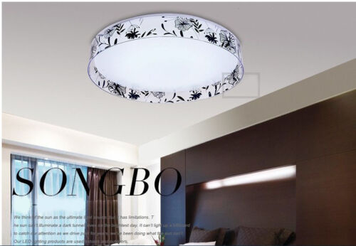 Black Acrylic Home Indoor Creative LED 24W Ceiling Light Lighting Fixtures