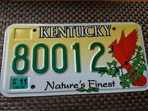 USA Nummernschild Kentucky