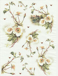 Rice Paper Flower Cottage For Decoupage Scrapbook Craft Sheet