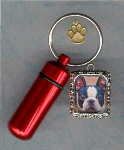 A00,Cat,Dog ID,Photo Frame,Cat Toy,Pet Urn,Cat,Cremation Cylinder