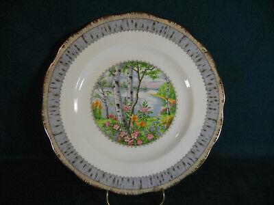 "Royal Albert Silver Birch 10 3////8/"" Diameter Dinner Plate s"