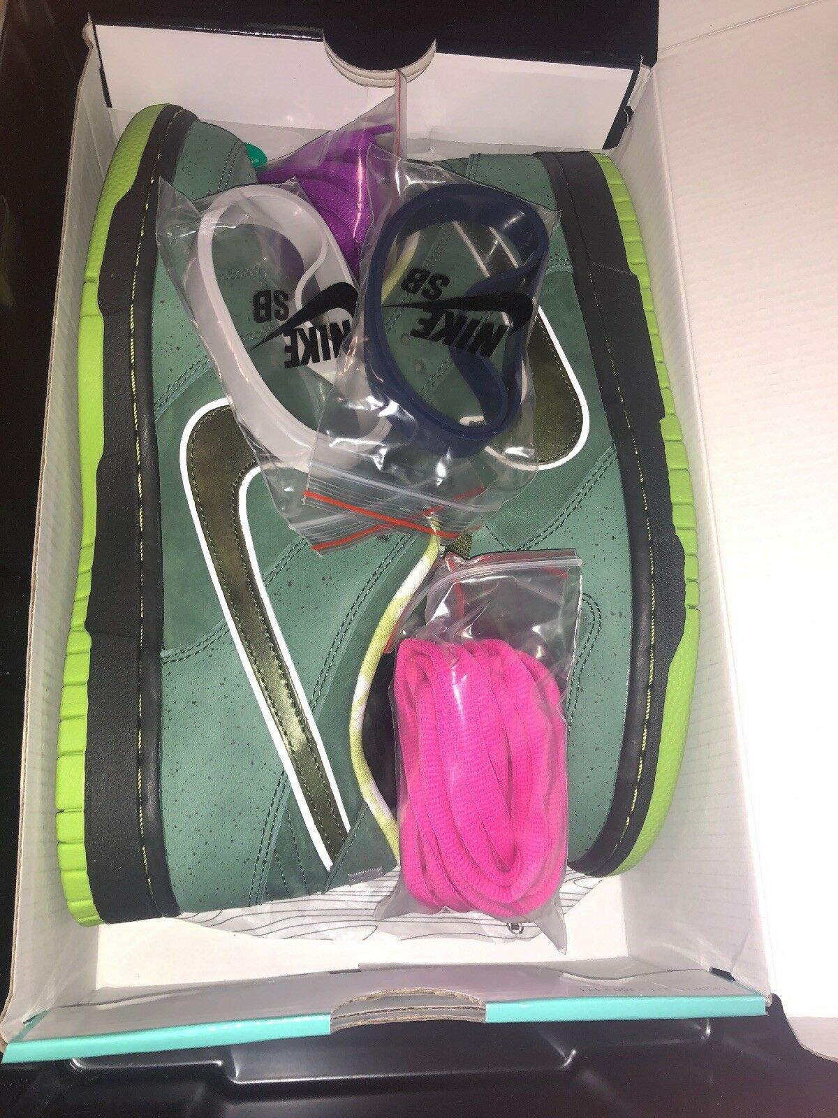 Nike SB Green Lobsters Size 9 Concept box