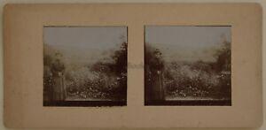 Il Giardino La Madre Amateur Francia Foto Stereo Vintage Citrato c1900