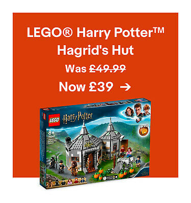 LEGO® Harry Potter TM