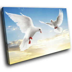 White-Dove-Blue-Sky-Bird-Funky-Animal-Canvas-Wall-Art-Large-Picture-Prints
