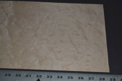 Birdseye Maple Raw Wood Veneer Sheets 9.5 x 38  inches 1//42nd thick     G7634-42