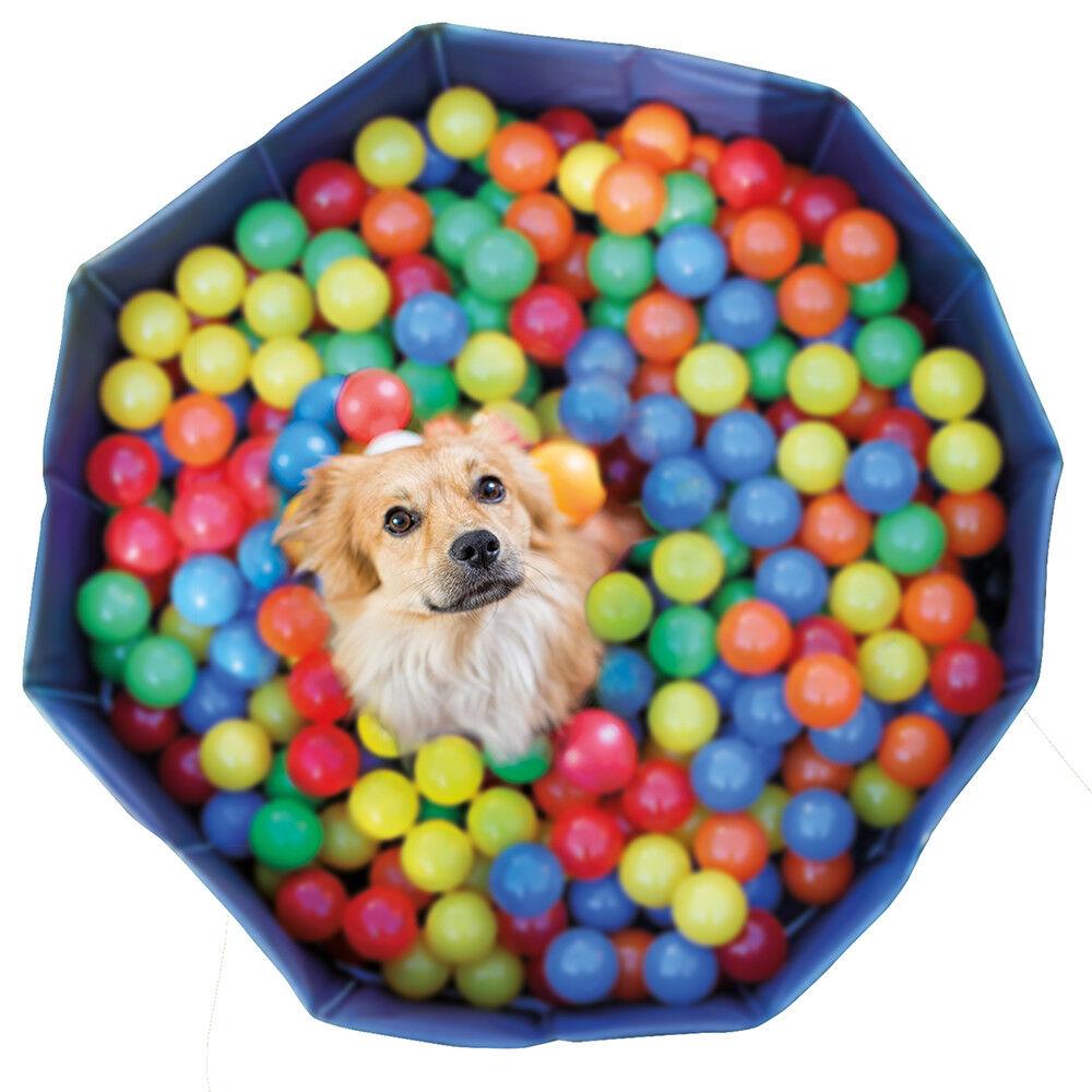 Palline per cani piscina palline 250 pezzi á 6cm ideale per il nostro pool Cani Cane Palla