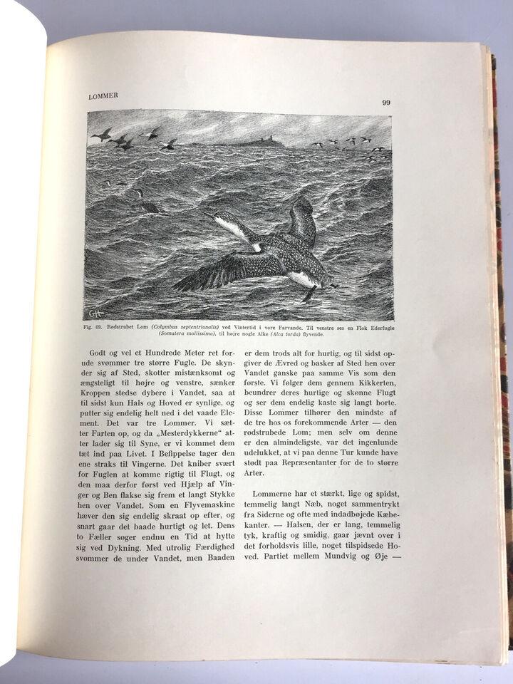 Danmarks Fugleliv - Gerhard Heilmann og A. L. V...