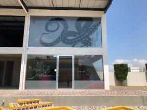 Renta Local Comercial Plaza Amigalia