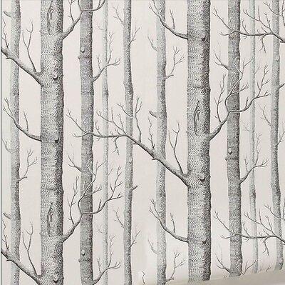 4 Rolls Lot Birch Tree Rustic Modern Black White Woods Wallpaper
