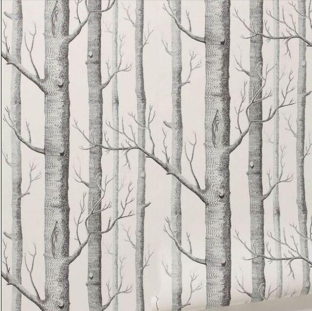 Birch Tree Wallpaper Modern Black White
