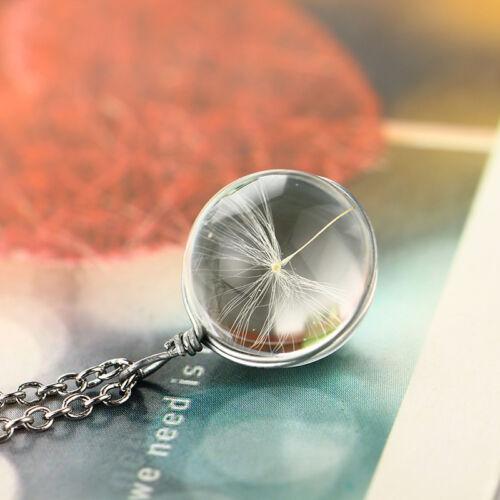 SHOP Fashion DIY Nature Dandelion Dried Flower Circular Pendant Necklace