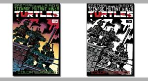 IDW-Mexico-Teen-Mutant-Ninja-Turtles-1-Color-Classic-1-Color-amp-Sketch-Covers