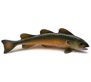 AAA-13833-Young-Cod-Fish-Sealife-Toy-Model-Replica-NIP