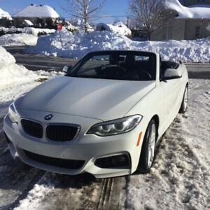 2017 BMW 2 Series M sport
